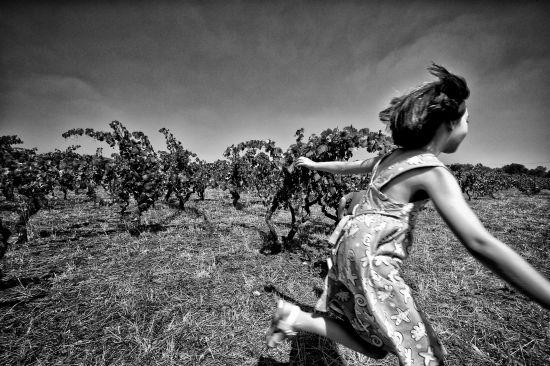 Lands People Wine